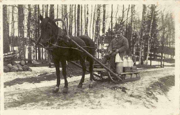 """Piena savācējs Roberts Lācis no Cesvaines """"Šķilteriem"""", vedot piena kannas ar ragavām uz pienotavu.1920.–1930.gadi. Foto autors nav zināms"""