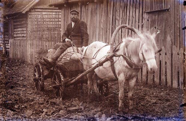 Vīrietis ratos (vāģos) Lubānā. Ap 1930.gadu. Alfreda Grāvera foto