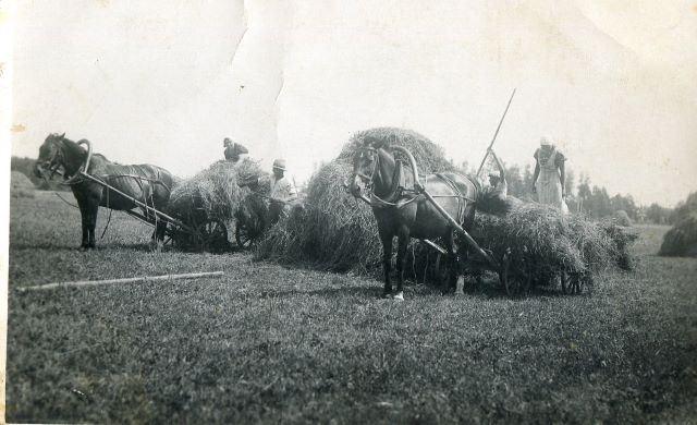 Siena kraušana vezumos no gubām (zārdiem) Mētrienā. 1930.gadu 2.puse Arvīda Gruduļa foto